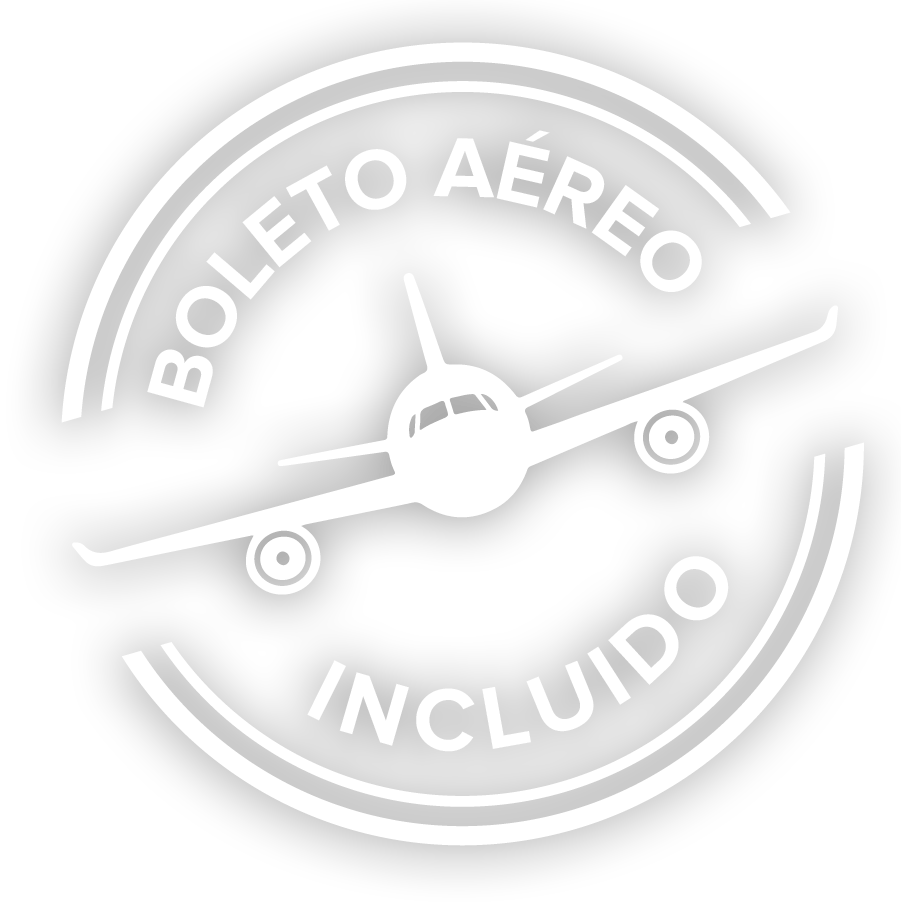 Boleto aéreo incluido logo